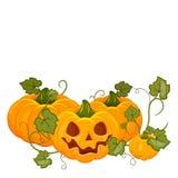 Chapeau de port de sorcière de potiron de Halloween de bande dessinée d'isolement Photographie stock