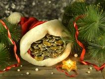 Chapeau de Santa avec l'argent Image stock
