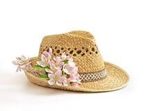 Chapeau de source Photos stock