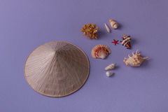 Chapeau et coquillages coniques Image stock