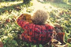 Chapeau laineux d'automne photographie stock libre de droits