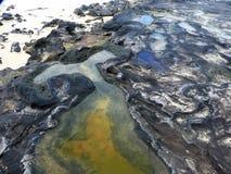 Chapeaux dans les roches brunes noires rocheuses sur la plage Image stock