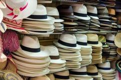 Chapeaux de Panama Photographie stock