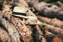 Chapeaux sur des rondins Photos libres de droits