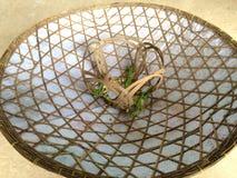 Chapeaux Vietnam Image stock