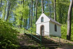 Chapel in beech forest Stock Photography