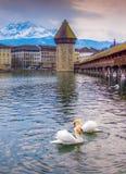 Chapel Bridge, Lucern Stock Photo