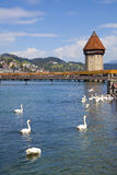 Chapel Bridge and Water Tower in Reuss River, Luze Royalty Free Stock Image