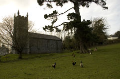 Chapel in the Countryside. Chapel on the grounds of Bunratty Castle. Surrounded by green meadows filled with chicken and sheep. Yes, I could live here Royalty Free Stock Photos
