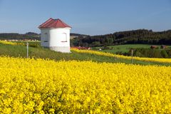 Chapel and field of rapeseed, springtime landscape Stock Photography