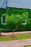 Chapel with green trees Stock Photo