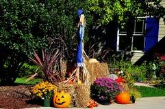 Chapel Hill, NC: Halloween Decorations Stock Photos