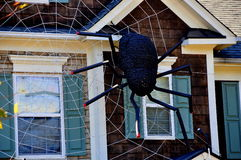 Chapel Hill, NC: Halloween Spider Web Decoration Royalty Free Stock Photo