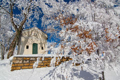Chapel in the italian alps after a frosty night. Chapel and trees in the italian alps after a frosty night Stock Image