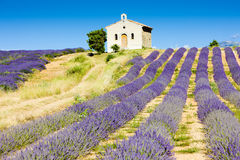 Chapel with lavender field Stock Photos