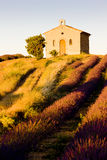 Chapel with lavender field Stock Image