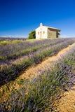 Chapel with lavender field. Plateau de Valensole, Provence, France Stock Images