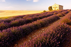 Chapel with lavender field Royalty Free Stock Image