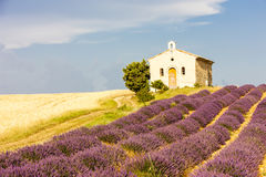 Chapel with lavender field, Provence. Chapel with lavender and grain fields, Plateau de Valensole, Provence, France Royalty Free Stock Photography