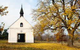 Chapel and lime tree. Autumnal view with chapel and lime tree royalty free stock image