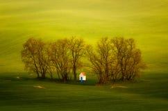 Chapel in trees. Little chapel in clump of trees among green meadows, Moravia, Ceska Republika Stock Photography