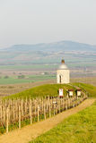 Chapel with vineyard, Czech Republic Stock Image
