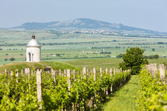 Chapel with vineyard, Czech Republic Stock Photos