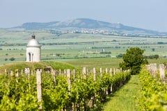 Chapel with vineyard, Czech Republic. Chapel with vineyard near Velke Bilovice, Czech Republic Stock Photos