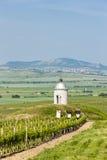 Chapel with vineyard, Czech Republic. Chapel with vineyard near Velke Bilovice, Czech Republic Royalty Free Stock Photos