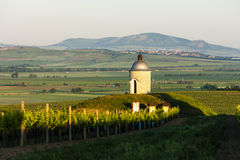 Chapel with vineyard, Czech Republic. Chapel with vineyard near Velke Bilovice, Czech Republic Royalty Free Stock Images