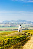 Chapel with vineyard near Velke Bilovice Royalty Free Stock Images