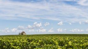Chapel in vinyard Saint-Estephe Royalty Free Stock Photography