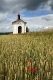 Chapel and wheat Royalty Free Stock Images
