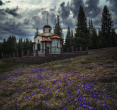 Chapel in the woods with crocuses. Chapel in the woods with beautifull crocuses Stock Photos