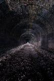 Chapline Hill Tunnel - Wheeling Terminal Railway - Wheeling, West Virginia. Inside the closed Chapline Hill Tunnel for the Wheeling Terminal Railway in Wheeling Stock Photos