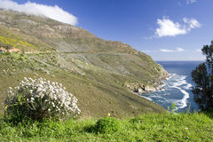 Chapman's Peak. The lush landscape along Chapman's Peak Drive in Cape Town, South Africa Royalty Free Stock Photography