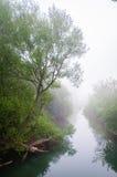 Chapman State Park Arkivfoto