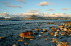 Chapmans峰顶,开普敦,南非视图  免版税库存图片