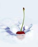 Chapoteo de la cereza Foto de archivo libre de regalías