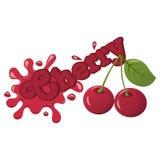 Chapoteo de la cereza del vector Libre Illustration