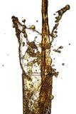 Chapoteo de la cola Imagen de archivo libre de regalías