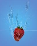 Chapoteo de la fresa ilustración del vector