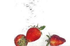 Chapoteo de la fresa Fotos de archivo libres de regalías