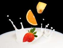 Chapoteo de la fresa en leche Foto de archivo libre de regalías