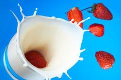 Chapoteo de la leche Imagen de archivo libre de regalías