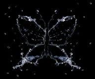Chapoteo de la mariposa del agua foto de archivo