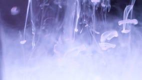 Chapoteo de la tinta en agua Primer del fondo abstracto de la tinta blanca que cae en el agua en fondo negro Efecto de almacen de metraje de vídeo