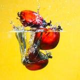 Chapoteo de las frutas de la palma de petróleo Foto de archivo