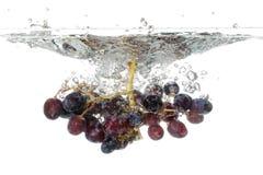 Chapoteo de las uvas Fotografía de archivo