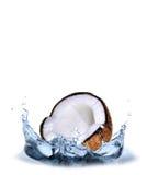Chapoteo del coco Foto de archivo libre de regalías